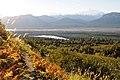 Cascade Trail above Byers Lake. Denali State Park, Alaska.jpg