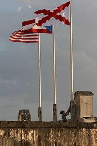 勃艮第十字旗