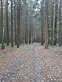 Cestou do Slatin - panoramio (9).jpg