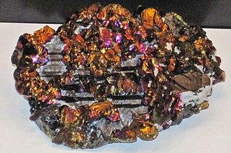 Cavnic - Chalcopyrite on sphalerite, Boldut Mine, Cavnic, Carnegie Museum of Natural History specimen CM27849
