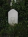 Charleroi Communal Cemetery - P.A. Szczurowski.jpg