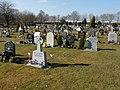 Charlton - Charlton Lawn Cemetery - geograph.org.uk - 1772364.jpg