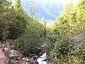 Chemin des Glaciers, Cascade du Dard - panoramio.jpg