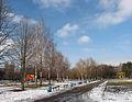 Cherkasy Khimikiv public garden 02.JPG