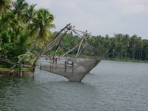 Fishing nets anchored to lakeside, surrounded by palm trees