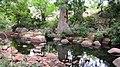 Chinnar River - panoramio (2).jpg