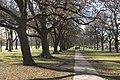 Christchurch - panoramio - Maksym Kozlenko (25).jpg