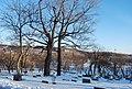 Cimetière du Mont-Royal - panoramio - 4net (7).jpg