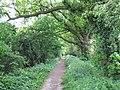 Clay Lane - geograph.org.uk - 1300012.jpg