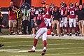 Cleveland Browns vs. Atlanta Falcons (29030852482).jpg