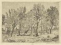 Clump of Trees, print by James Ensor, 1888, Prints Department, Royal Library of Belgium, S. II 53364.jpg