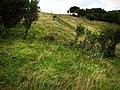 Coast path Dinas Island - geograph.org.uk - 534055.jpg