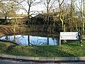 Coldred's second pond - geograph.org.uk - 634012.jpg