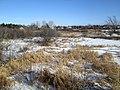Confederation Trail, Charlottetown, PEI (38516469765).jpg