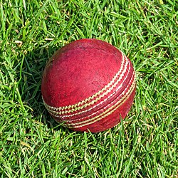 Cricket ball at North Middlesex Cricket Club, Crouch End, London.jpg