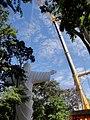 Cristo Salvador de Sertãozinho, em construção. Içamento para o pedestal da estátua do Cristo que pesa 40 toneladas e mede 18 metros de altura em 24 de abril de 2013. Ao fundo uma Paineira florida (Ceiba - panoramio.jpg