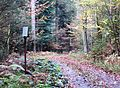 Crngrob Slovenia - Crngrob 3 Mass Grave.JPG