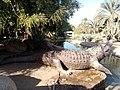 Crocodile fountain.jpg