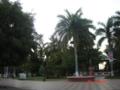 Culiacan12.png