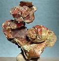 Cuprite-Calcite-Copper-118500.jpg