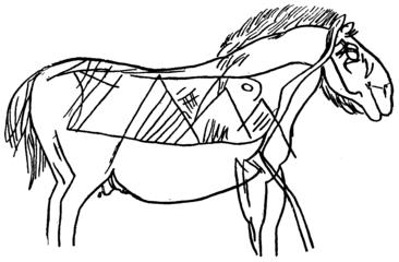 D278- figuration de cheval (grotte de combarelles). - L1-Ch5.png