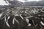 Deception Island, Antarctica (24313629783).jpg