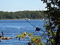 Deer Island, Amesbury, Oct 2012, I.JPG