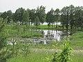 Degučių sen., Lithuania - panoramio (136).jpg