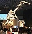 Deinocheirus mount.jpg