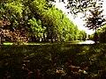 Delfshaven Park 2 20100119.jpg