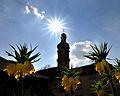 Der Schlosspark Weikersheim im Frühling. 05.jpg