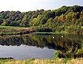 Derwenthaugh Park, Winlaton Mill - geograph.org.uk - 71747.jpg