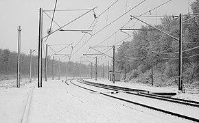 Desenka Railway Halt 2017 BW G1.jpg