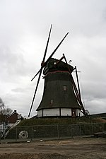 Deurne - molen Maria-Antoinette met kaalgezette roeden.jpg