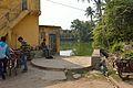 Dhirbala Addy Memorial Women Bathing Ghat - Melai Pond - Amta Bazaar - Amta - Howrah 2015-11-15 7119.JPG