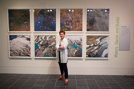 Diane Burko, Waters Glacier and Bucks, 2013