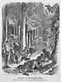 Die Gartenlaube (1873) b 686.jpg