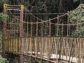 Dilapidated Bridge at Abbey Falls.jpg