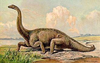 Heinrich Harder - Image: Diplodocus Heinrich Harder