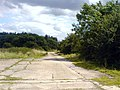 Disused airfield road near Pamela Plantation - geograph.org.uk - 508092.jpg