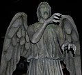 Don't blink! (3133071324) (cropped).jpg