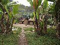 Dorp bij Ranomafana.jpg