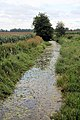 Drainage ditch at Fodderfen Drove - geograph.org.uk - 1428811.jpg
