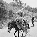 Druznische vrouw met kind op een ezel op een landweg De vrouw verbergt het gezi, Bestanddeelnr 255-3748.jpg