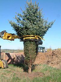 Used Christmas Tree Baler