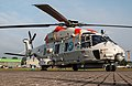 EGWC - NH Industries NH90 NFH - Royal Netherlands Air Force - N-325 (41861645975).jpg