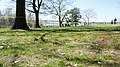 Easter Egg Hunt at Conference House in TottenVille Staten Island, NYC - panoramio (4).jpg