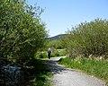 Ed Nixon Trail through wetlands. MORE INFO IN DESCRIPTION - panoramio.jpg