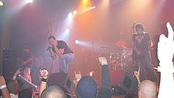 Element Eighty Live Performance.jpg