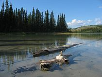 Emerald Lake Yukon.jpg